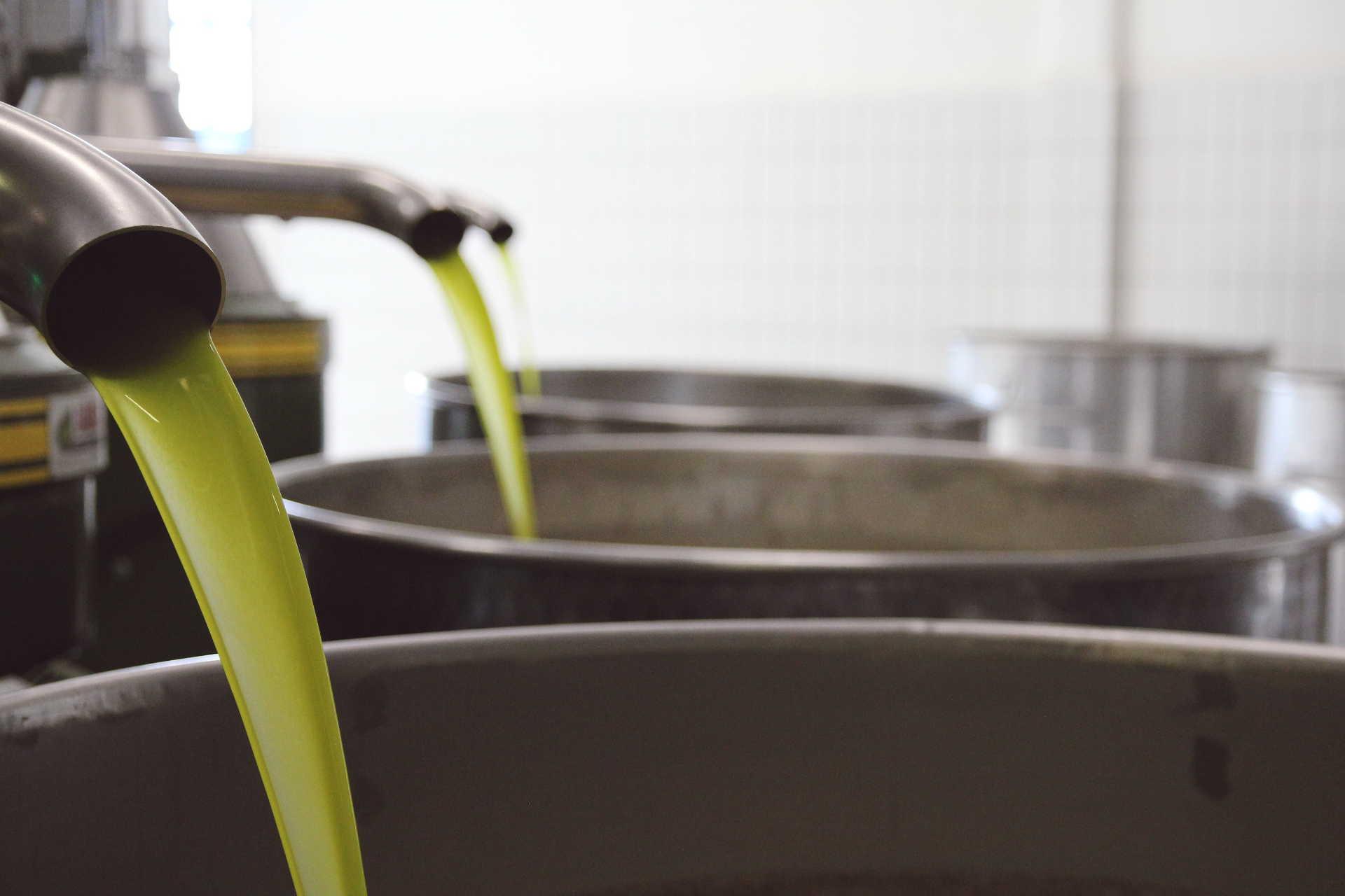 Agricola Marmo - Il nostro olio - la spremitura