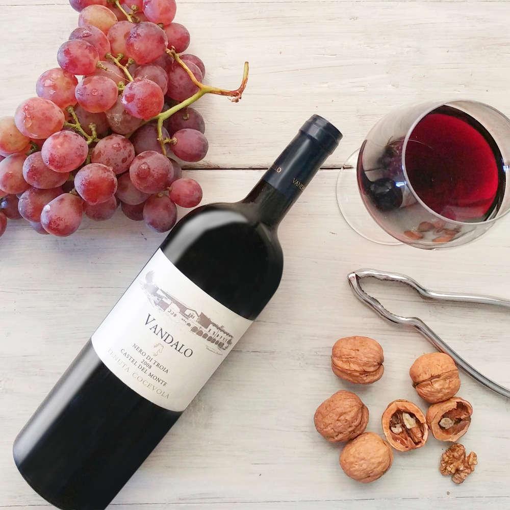 Un vino forte, un rosso di razza, il Vandalo