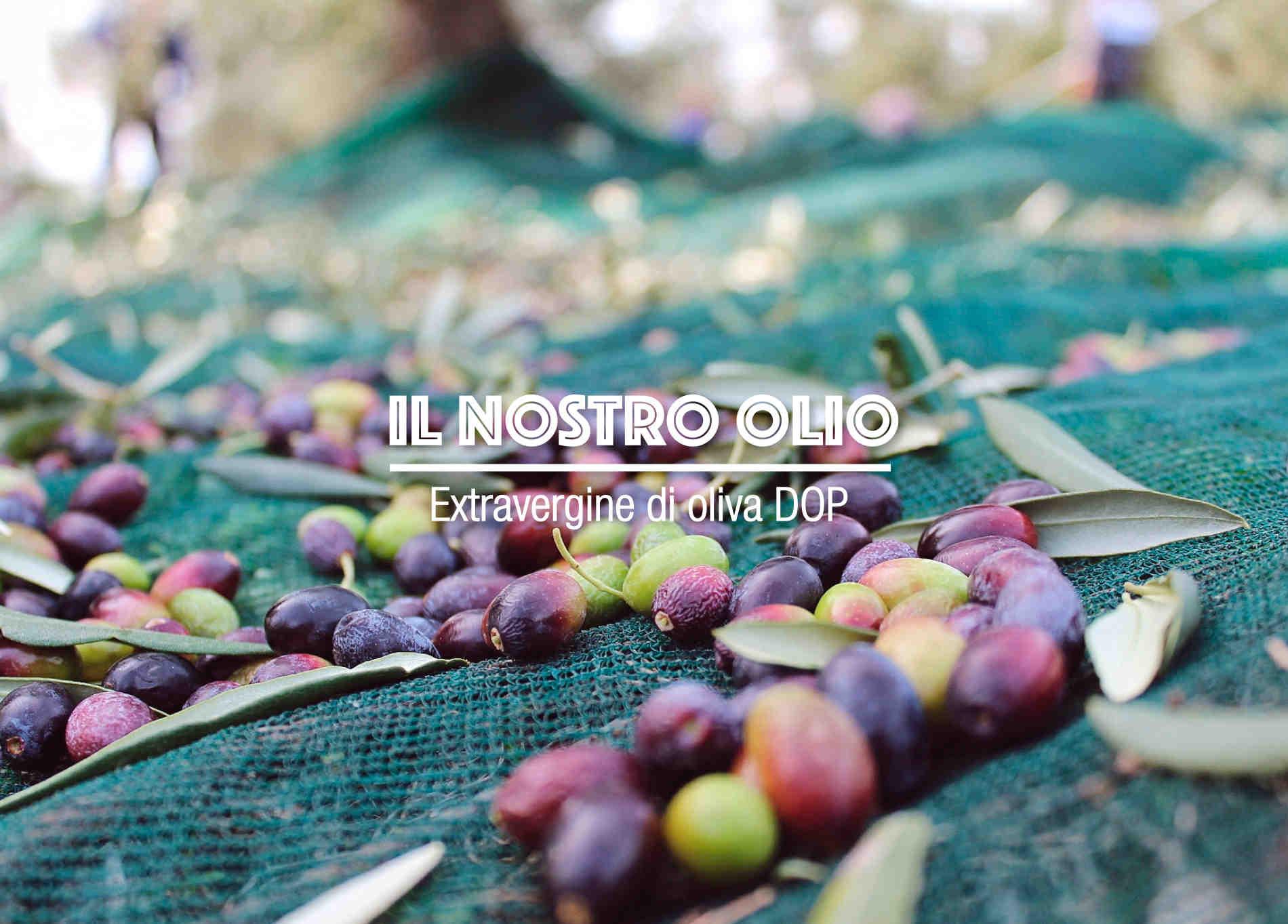 Agricola Marmo - Il nostro olio