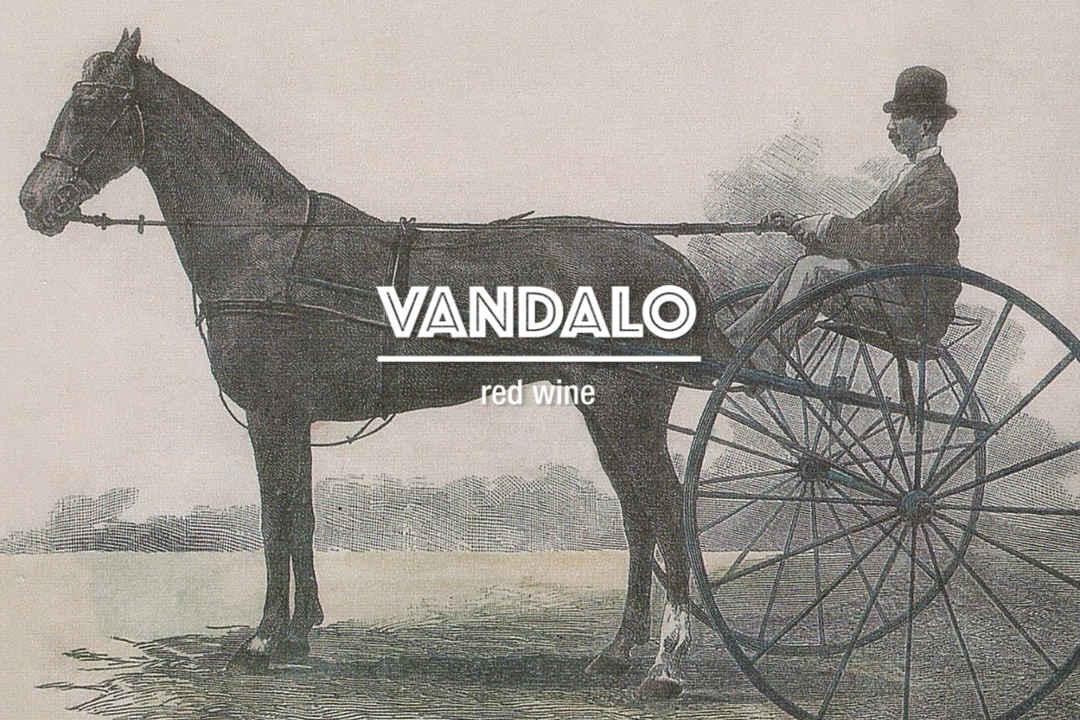 Vandalo - Red wine